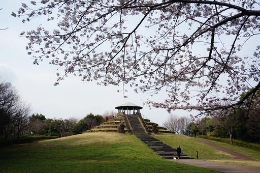Shikinomori